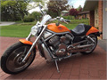 2003 Harley-Davidson V-Rod Anniversary Edition Used 12631 miles Private Party  640000 814-659