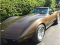 You are bidding on a beautiful 1979 Corvette 49000 original miles New tires Also have brand new