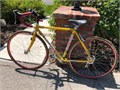 Vintage LeMond Buenos Aires 1999 premier Greg LeMond model bicycle