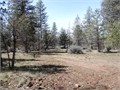 5 acres off of Day Road Nice level view property Power and phone at the corner of property Approx