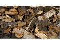 Plenty of firewood for sale and cut to your liking Pick up and delivery is available depending on t