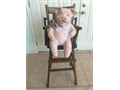 Adorable ceramic pig in antique highchair Would like to sell as a set but willing to sell the happ