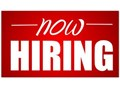 We are in need of Several Forklift Operators we are looking for Sit Down Stand Up Electric Pallet