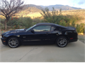 2014 Ford Mustang GT coupe 50 liter engine 420 hp automatic transmission with manual-shift capac
