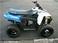 330cc  auto forward  reverse boardwalk bluewhite This atv only has 2 tanks of gas through it an
