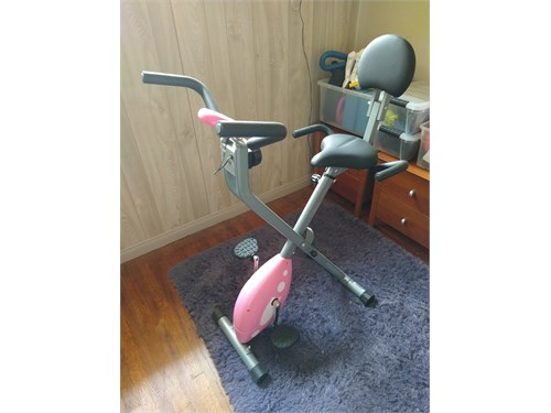 Sunny Health Exercise Bik