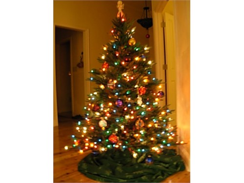 Pre lit christmas tree for sale north augusta sc
