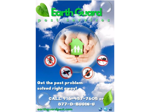 Protect Your Home w/ Pest
