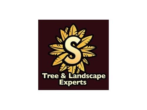 Supreme Tree & Landscape