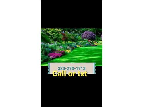 Gardener jardinero yard