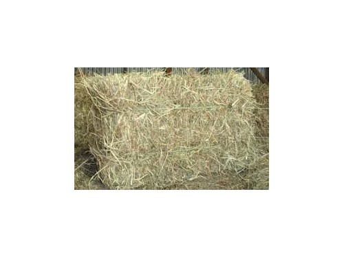 STRAW/HAY-LARGE BAGS