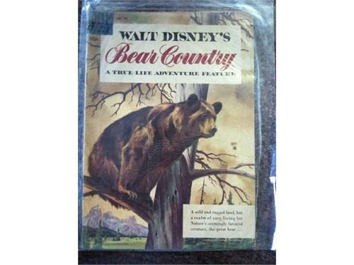 Disney's Bear Country