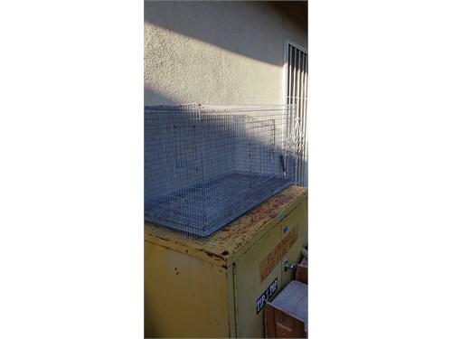 Lovebird Tiel cage