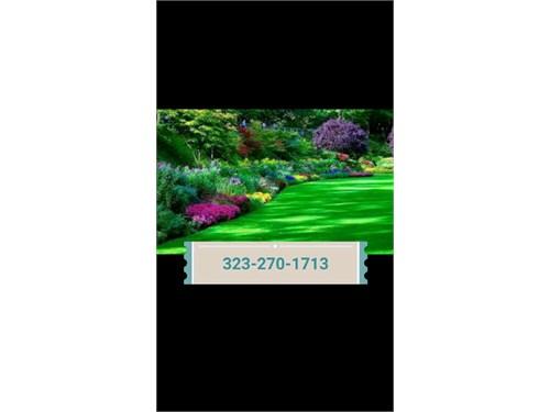 Gardener landscaping Jard