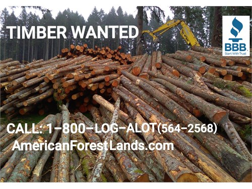 Timber Logging Pacific NW