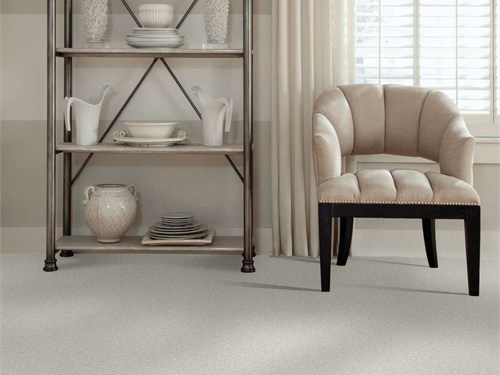 shaw thick pile carpet