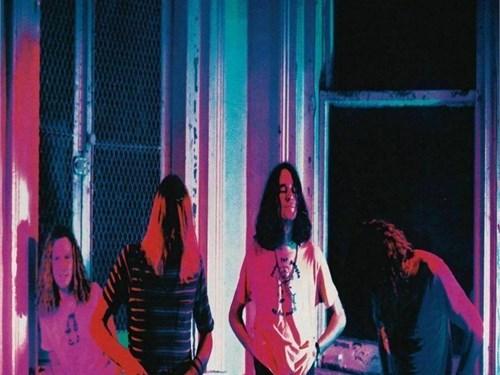 *NEW* Mudhoney Vinyl