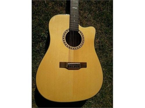 Guitar Acoustic Electric