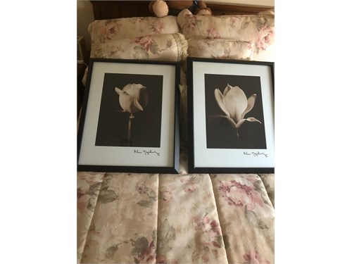 two framed matted posters