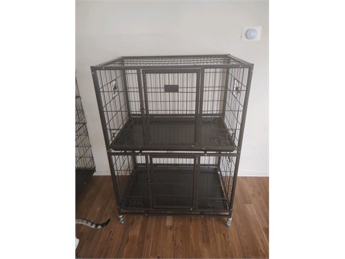 Stacked puppy cages