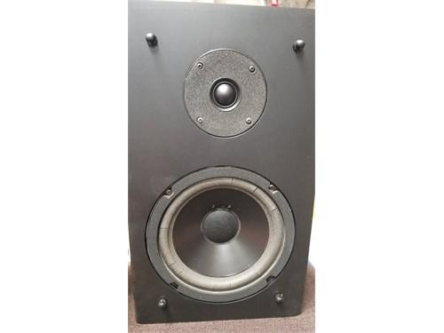 RogerSound Labs Speaker