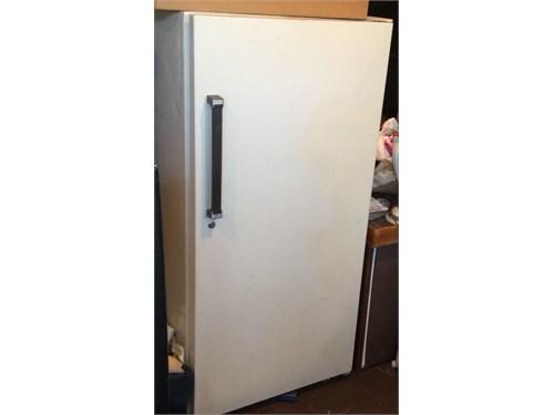 Freezer  upright size
