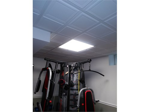 Fluorescent light boxes